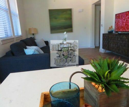 Luxury San Antonio Apartments